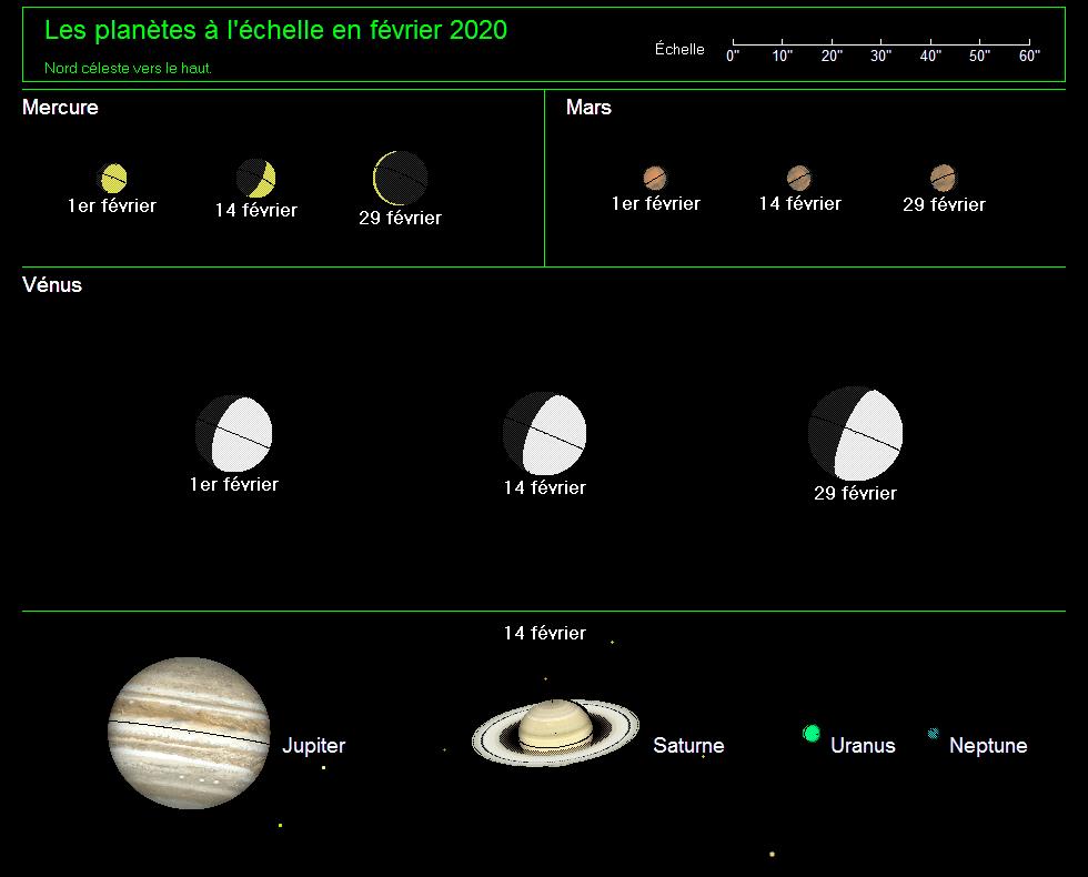 Les planètes à l'échelle en février 2020